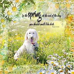 Sweet_smell_of_spring.jpg