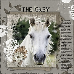 The_Grey_pe.jpg