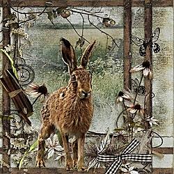 The_Hare.jpg