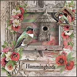 The_Hummingbirds.jpg