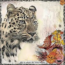 The_Spotty_Leopard_.jpg