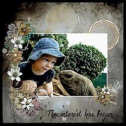The_interest_has_begun_.jpg