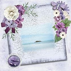 lovely_violets.jpg