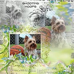 shooting_hoops.jpg