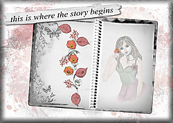 the-story-begins.jpg