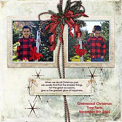 11-8-16_Noah_Greenwood_Tree_Farm.jpg
