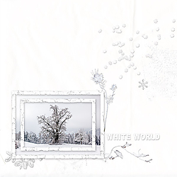 2019_03_white.jpg
