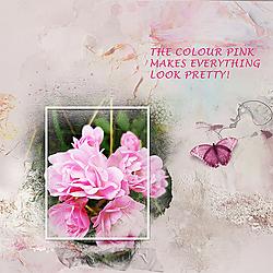 2019_06_pink.jpg