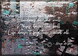 ATC-2019-014-Shadows-on-the-Wall.jpg