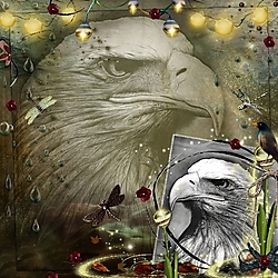E_for_eagle.jpg