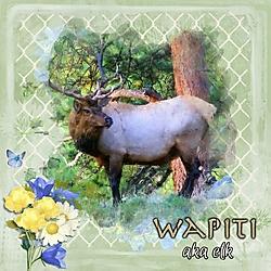 JA_W_is_for_Wapiti.jpg