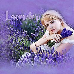 L-Lavender-Web.jpg