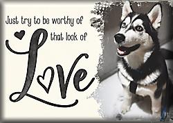 Look-of-Love.jpg