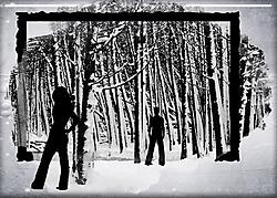 P52-Week-2-Cold.jpg