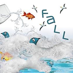 P52_Week_12_-_Spring_or_Fall.jpg