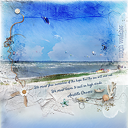 P52_Week_26_rough_Anna-aspnes_Coastline_Shells.jpg