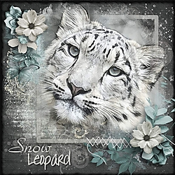 S_is_for_Snow_Leopard.jpg