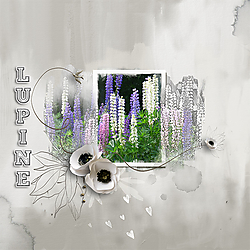 Scrap_52_WEEK_12_Lupine_Emeto_10_in-my-heart.jpg