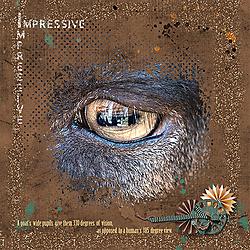 Scrap_52_Week_35_Impressive_WendyP_30_Memorykeeping.jpg