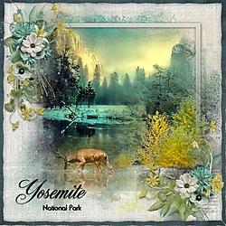 Y_is_for_Yosemite.jpg
