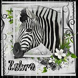 Z_is_for_Zebra.jpg