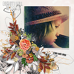12X12-GRACE---STOP-AND-LOOK.jpg