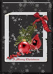 A-Merry-Christmas.jpg