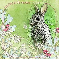 Munching_in_the_meadow-smaller.jpg