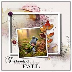 The_beauty_of_fall_21.jpg